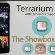 Ways to Download the Terrarium TV App on Smartphone